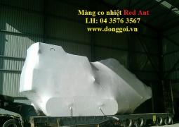 Mang_co_nhiet
