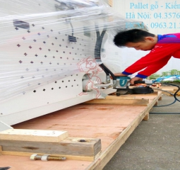 pallet-go-kien-do-10